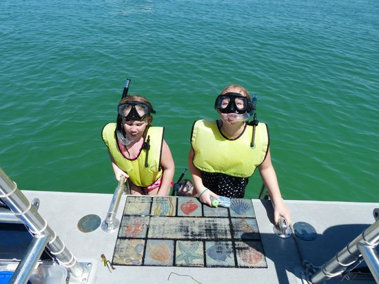 Island Boat Adventures : Snorkeling 2014