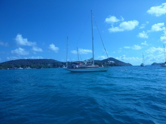 Morningstar Sailing and Power Charters : A day of adventures awaits us!