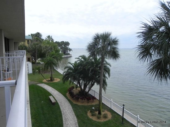 Bay Harbor Hotel : A view from our room looking over Tampa Bay.