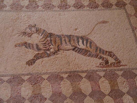 Kefalos Beach Tourist Village: Archaeological Mosaic