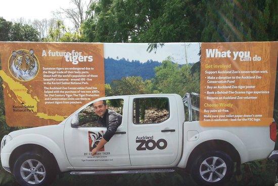 Auckland Zoo: una gita allo zoo