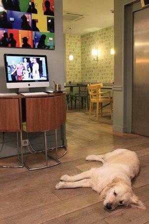 Hotel de Londres Eiffel : The Friendly Resident Dog