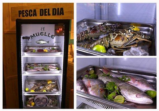 Restaurante El Muelle: You decide want you want, always fresh