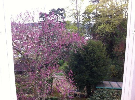Chambres d'Hotes Couleurs du Temps : Côté jardin