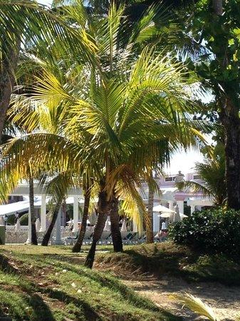 Hotel Riu Palace Tropical Bay: sitting on the beach looking toward resort/pool