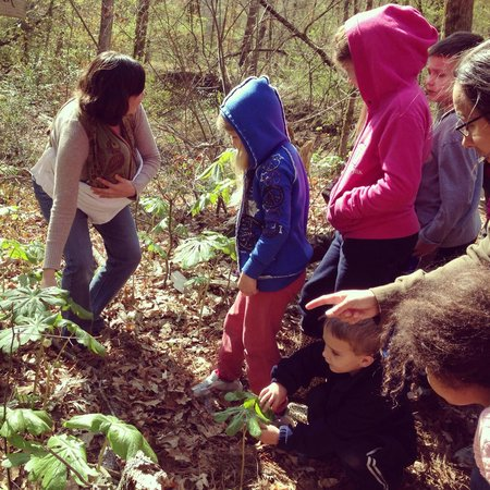Walter B Jacobs Memorial Nature Park: Guided Wildflower Hike
