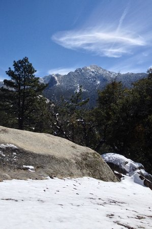 Idyllwild Nature Center: Beautiful views walking up from the first car park