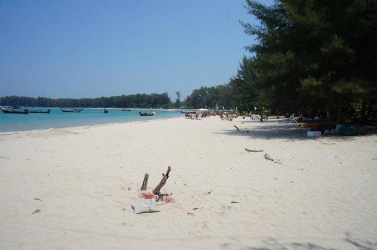 Nai Yang Beach: Beach