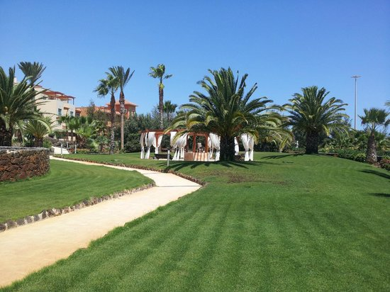 Hotel Elba Carlota : Gardens