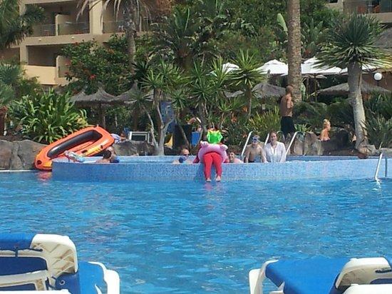 Hotel Elba Carlota : Entertainment team in pool