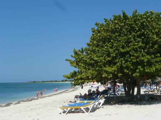 Playa Ancon: plage tip top