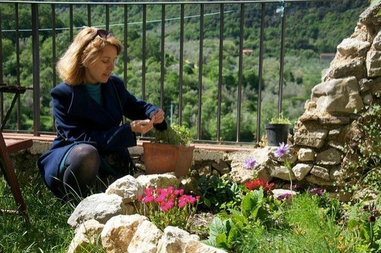 Convivio Rome Italian One Day Cooking Holidays : Convivio Rome : Sally gathering herbs before our class