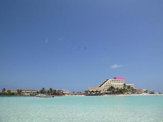 Mia Reef Isla Mujeres: Vista del hotel desde el mar