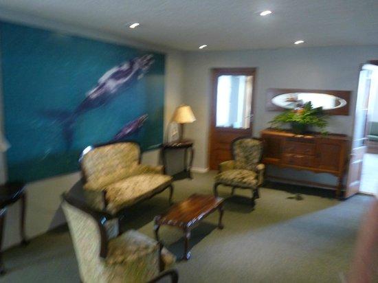 Windsor Hotel & Apartments : partie commune