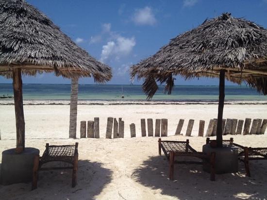Waridi Beach Resort & Spa: la spiaggia