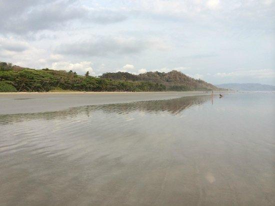 Florblanca Resort: Playa Hermosa