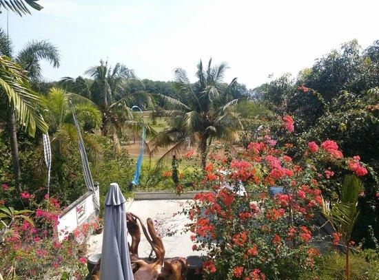 Tempat Senang Resort : view from our balcony