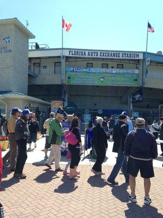 Florida Auto Exchange Stadium - Dunedin Blue Jays: The people lineup