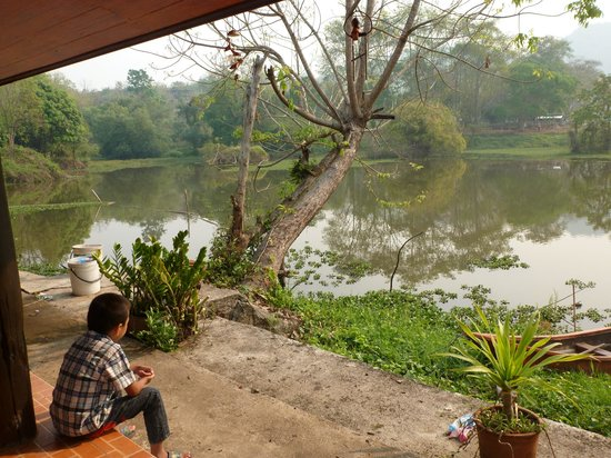Goldmine Resort: L'étang près du restaurant