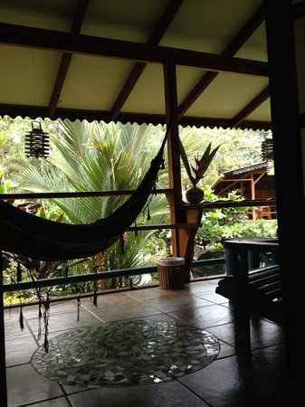Hotel Banana Azul : View from the bed in the Sloth cabina
