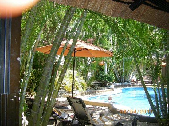 Hotel Aventura Mexicana: Oasis