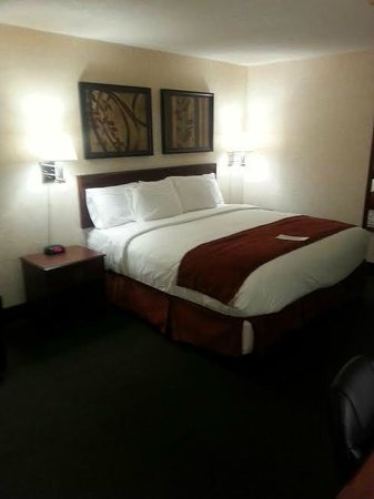 LivINN Hotel Minneapolis North / Fridley: Clean and comfortable
