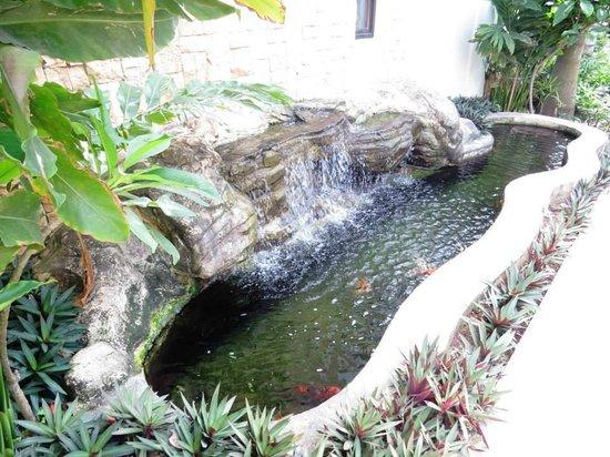 Henann Lagoon Resort: ..
