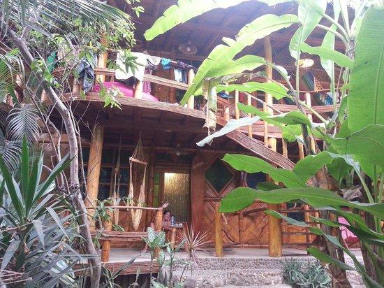 Balsa Surf Camp: Hab 2