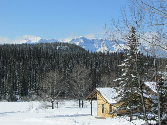 Old Entrance B 'n B Cabins & Teepees: Mountain backdrop
