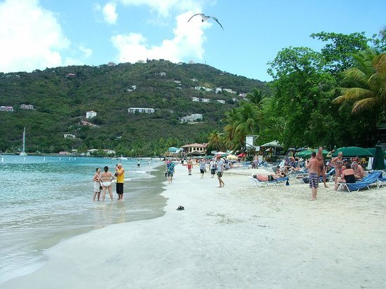 Tortola Highlights Tour: One of the beaches along the tour