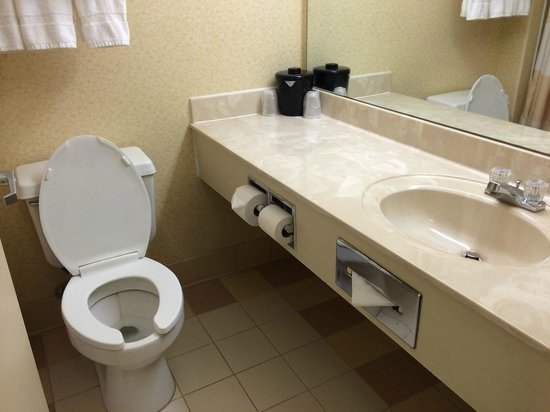Fairfield Inn Appleton : Vanity