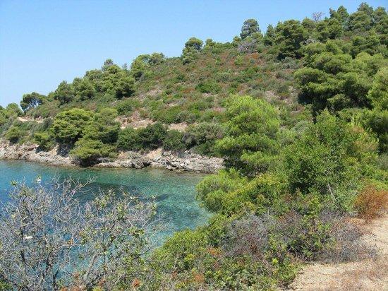 Porto Carras - Meliton: Одна из бухт^^
