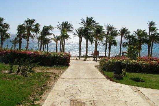 Le Meridien Dahab Resort : ;-)