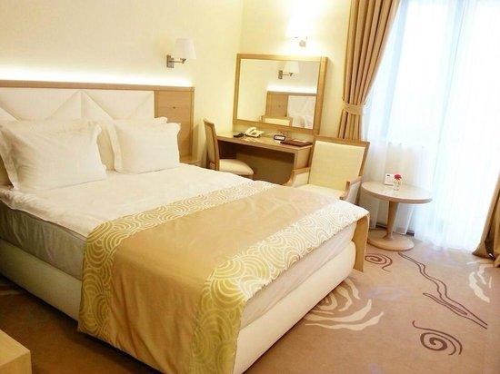 Hotel Coroana De Aur : Chambre luxe