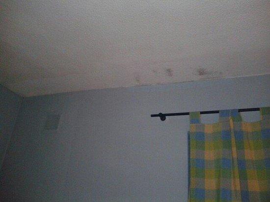 Hostal El Ciervo: El techo de mi habitación