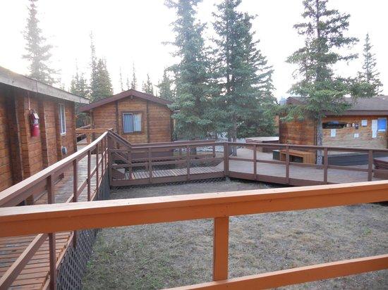 Denali Cabins: le cabine/camere