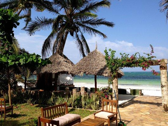 Zanzibar House: view from the grounds