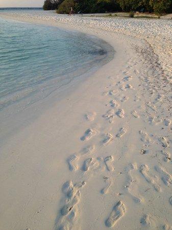 Royal Island Resort & Spa: Foot prints, lovely lovely