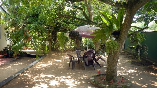 Mihin Villa: Front garden