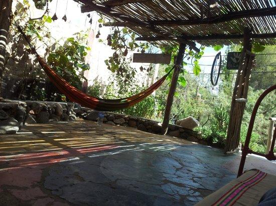 Pacha Cuty Hostel : Tardecita tucumana..