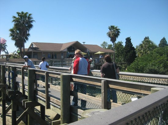 Tampa Electric Manatee Viewing Center : Board walk heading to gift shop