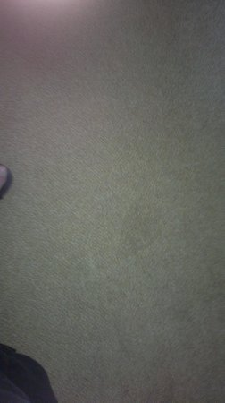 Millbrook Lodge Hotel: Carpet Stained