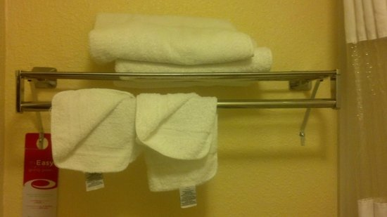 Econo Lodge Airport: flimsy towels