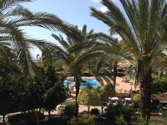 Hotel Elba Palace Golf: Pool