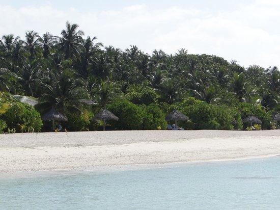 Filitheyo Island Resort: swim in paradise