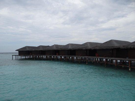 Filitheyo Island Resort: Water villas
