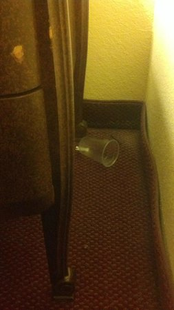 Econo Lodge Airport: the trash between the night stand and the wall!