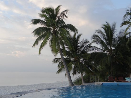 Filitheyo Island Resort: pool bar