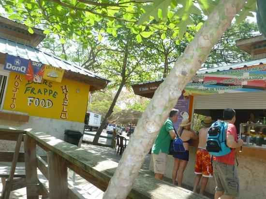 Casita Tropical: Flamenco Boardwalk