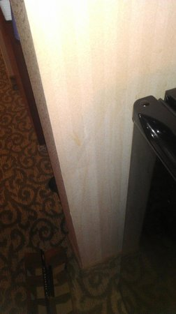 Comfort Suites: Coffee splatter cleaned off
